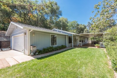 4385 Woodside Way, Shingle Springs, CA 95682 - #: 18054414