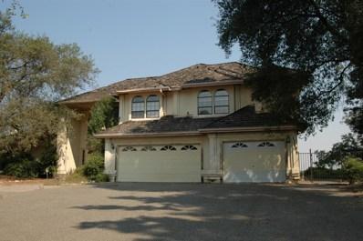 11405 Scarlet Oak Drive, Oakdale, CA 95361 - #: 18055650