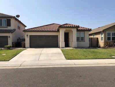 4848 Ice Age Way, Elk Grove, CA 95757 - #: 18057632