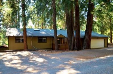 2854 Viona Road, Pollock Pines, CA 95726 - #: 18057888