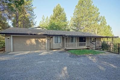 6766 Diablo View Trail, Placerville, CA 95667 - #: 18058885