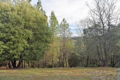 2467 Shirt Tail Trail, Cool, CA 95614 - #: 18059168