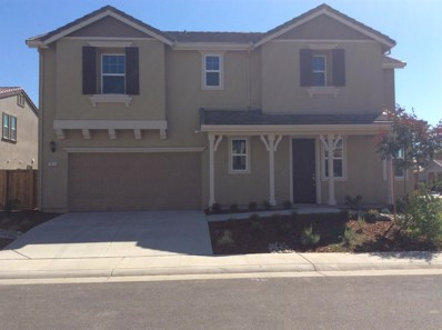 7813 Finnhorse Way, Sacramento, CA 95828 - #: 18059401
