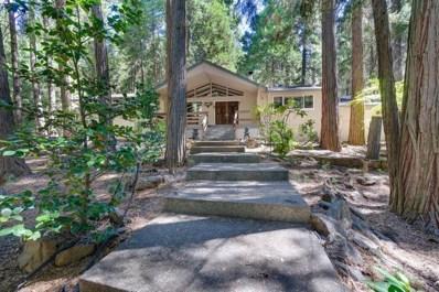 2748 Paddle Pass, Pollock Pines, CA 95726 - #: 18061630