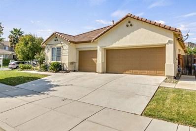 221 Abelia Lane, Patterson, CA 95363 - #: 18061767