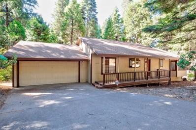 3364 Gold Ridge Trl, Pollock Pines, CA 95726 - #: 18061850
