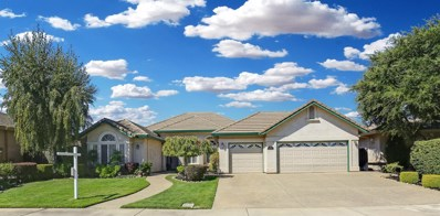 1175 Westbridge Drive, Lodi, CA 95242 - #: 18063199