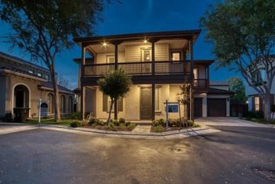 371 W Viento Street, Mountain House, CA 95391 - #: 18064042