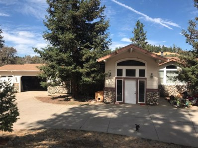 4220 Savage Road, Placerville, CA 95667 - #: 18064372