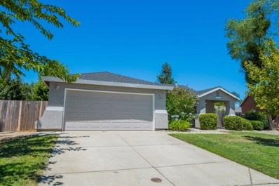 707 Rich Court, Wheatland, CA 95692 - #: 18064434