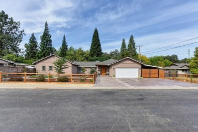 5205 Castle Street, Fair Oaks, CA 95628 - #: 18065034