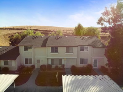 1042 Spring Valley Common, Livermore, CA 94551 - #: 18065843