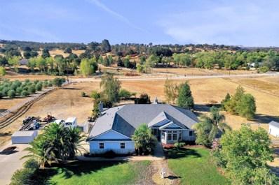 10918 S Camanche Parkway, Wallace, CA 95254 - #: 18066026