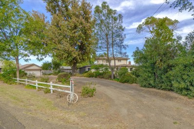 28968 County Road 26, Winters, CA 95694 - #: 18067715