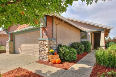 740 Wagon Wheel Lane, Lincoln, CA 95648 - #: 18068046