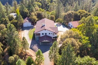 22935 Pine Hollow Road, Colfax, CA 95713 - #: 18068698