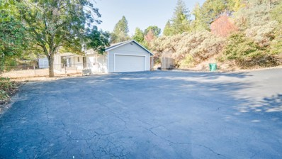 4501 Cousins Court, Shingle Springs, CA 95682 - #: 18069158