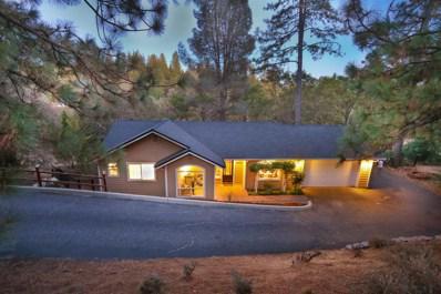 18801 Joseph Drive, Grass Valley, CA 95949 - #: 18069651