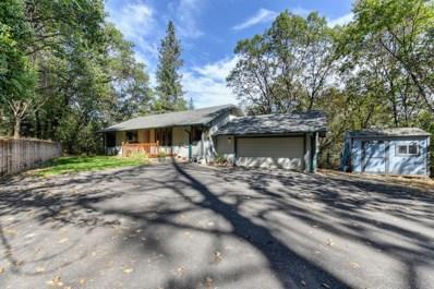 519 Greenwood Drive, Meadow Vista, CA 95722 - #: 18069929