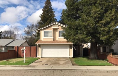 1801 Amber Leaf Way, Lodi, CA 95242 - #: 18070881