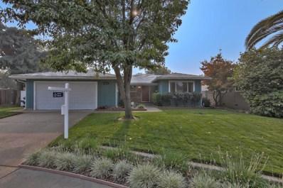 8410 Hollins Court, Sacramento, CA 95826 - #: 18071381