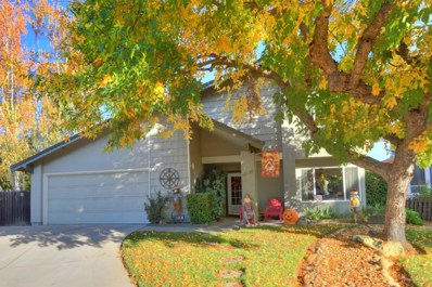 10130 Elk Wood Court, Elk Grove, CA 95624 - #: 18071506