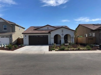 3852 Lookout Drive, Modesto, CA 95355 - #: 18071802