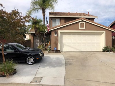 13 James Court, Tracy, CA 95376 - #: 18072217