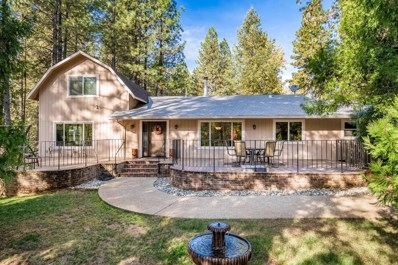 827 Pine Oak Lane, Meadow Vista, CA 95722 - #: 18072567