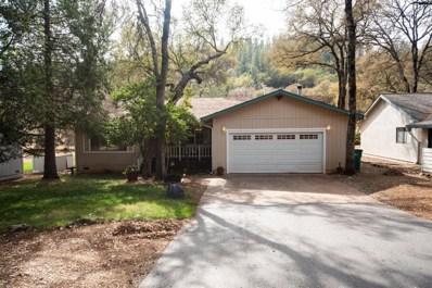 14160 Torrey Pines Drive, Auburn, CA 95602 - #: 18073033