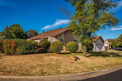 3013 Warren Lane, El Dorado Hills, CA 95762 - #: 18073481