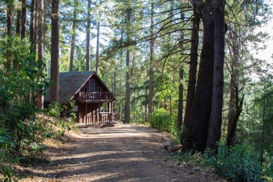 One Eye Creek, Placerville, CA 95667 - #: 18074419