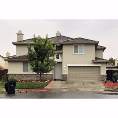 207 Sorrel Court, Patterson, CA 95363 - #: 18076314