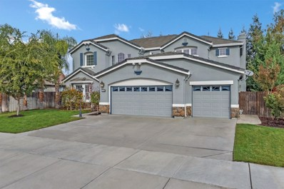 379 John Kamps Way, Ripon, CA 95366 - #: 18077579