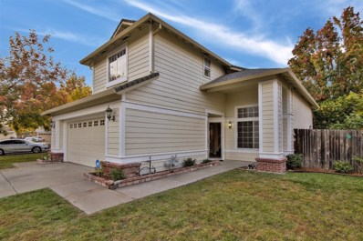 10 Windance Court, Sacramento, CA 95823 - #: 18077978