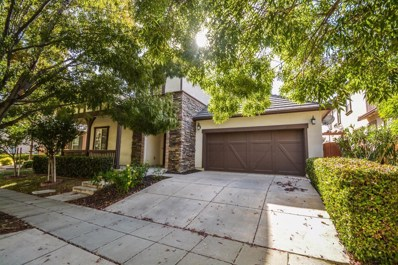 328 W Conejo Avenue, Mountain House, CA 95391 - #: 18078225