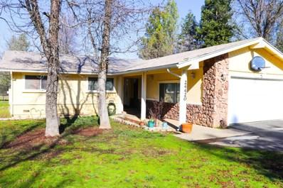 24420 S Camelia Way, Auburn, CA 95602 - #: 18079054