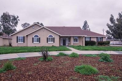 21315 E Rose Clover Lane, Linden, CA 95236 - #: 18079242