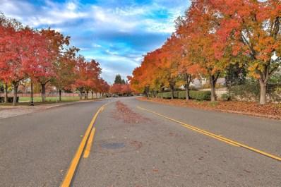9448 Crystal Shore Lane, Elk Grove, CA 95758 - #: 18080120
