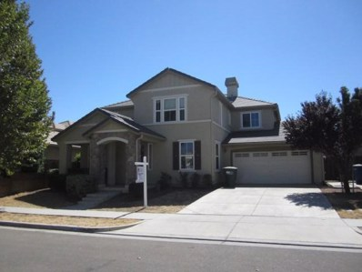 1438 Hunter Creek Drive, Patterson, CA 95363 - #: 18080363