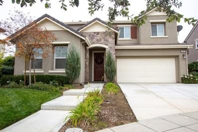 766 N Questa Court, Mountain House, CA 95391 - #: 18081233