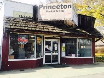 236 Commercial Street, Princeton, CA 95970 - #: 18081509