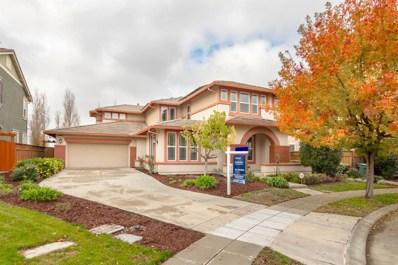 23 NE N Menlo Park Street, Mountain House, CA 95391 - #: 18081693