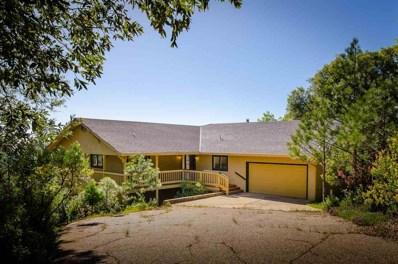 12931 Spagnoli Mine Road, Pine Grove, CA 95665 - #: 18600604
