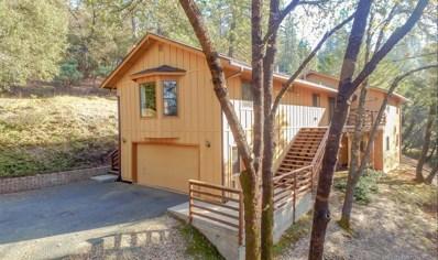 1076 Pinecroft Road, Colfax, CA 95713 - #: 19001353