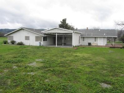 16690 County Rd 63, Brooks, CA 95606 - #: 19001754
