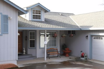 16965 Patricia Way, Grass Valley, CA 95949 - #: 19002619