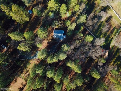 18969 Hiers Road, Grass Valley, CA 95949 - #: 19005630