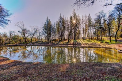 18787 Hiers Road, Grass Valley, CA 95949 - #: 19005829