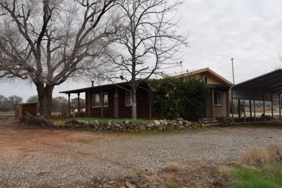 13301 Red Hills Road, Chinese Camp, CA 95309 - #: 19006016